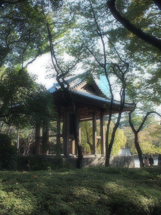 梵鐘は木立の中に