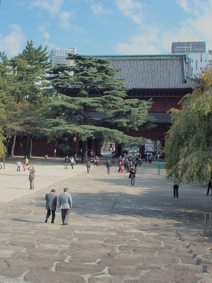 大河ドラマ「江〜姫たちの戦国〜」の崇源院墓所特別公開も!