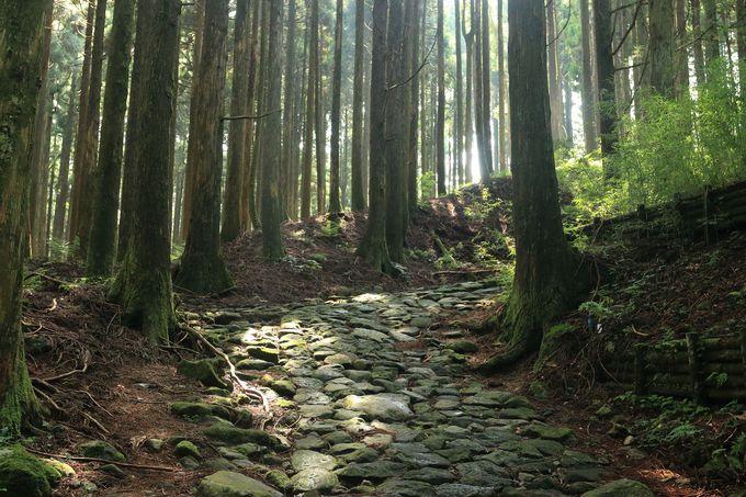 江戸時代の石畳を堪能する