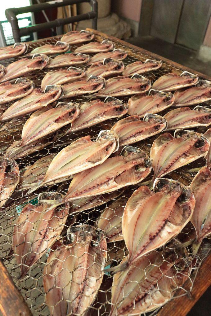 網代は新鮮な魚介類と海三昧のパイオニア