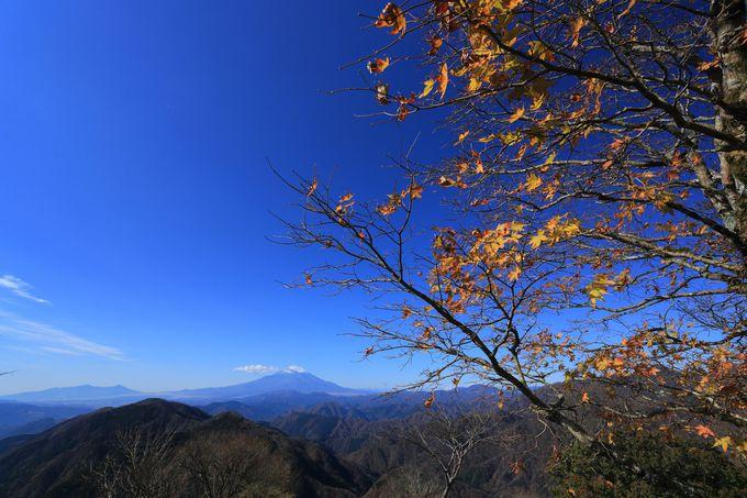 鍋割山は丹沢山塊の西に位置する名峰!
