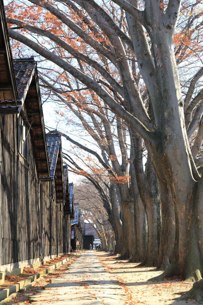 山形県「酒田」はロマンティックで郷愁を誘う港町