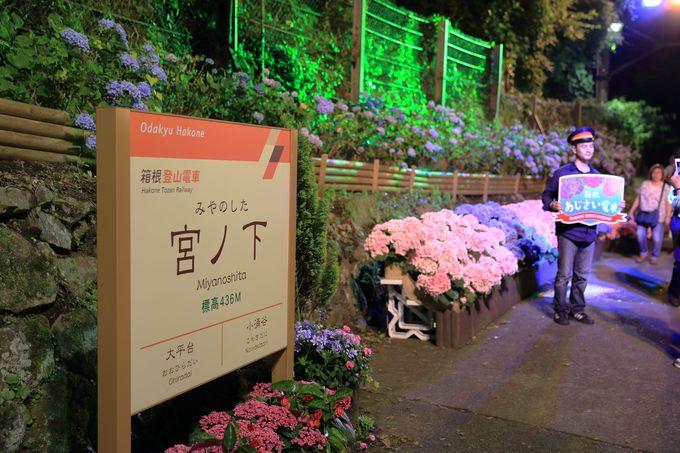 宮ノ下駅や塔ノ沢駅では撮影会も行われます