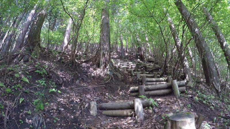 仙人が棲む!?秀麗富士山!神奈川「シダンゴ・高松山」縦走ルート