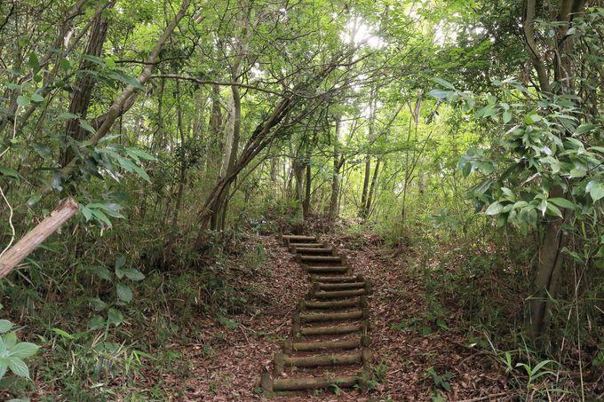 散策道としても!藤野を一望できる丘で恋を成就する誓いを立てる