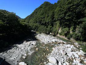 沢・丸太橋・渡渉!涼やかな神奈川「畔が丸山」森林浴登山