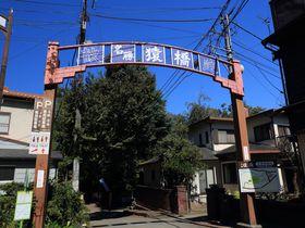 広重が描いた名勝「猿橋」!山梨・日本三奇橋の優美を体感