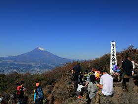 約1時間!混雑なし!神奈川・金時山ハイキングで絶景富士を|神奈川県|トラベルjp<たびねす>