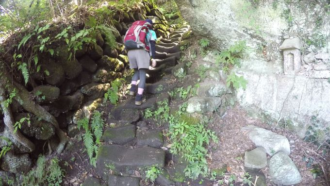 登山初心者から上級者までまで多彩なルート!鋸山ハイキングルートを動画で紹介!