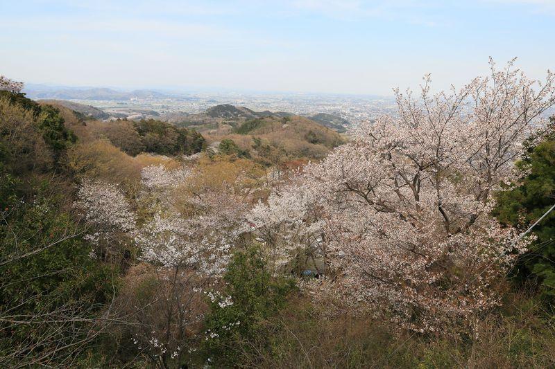 山萌え!七不思議!彩溢れる栃木「大平山」四季折々のお手軽厄除け自然散策