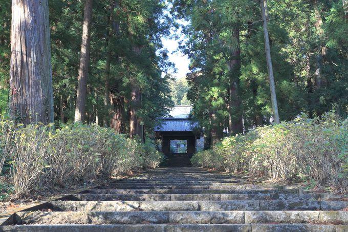 大平山、晃石山方面へここから極彩色のハイキング!七不思議の「大中寺」も必見!