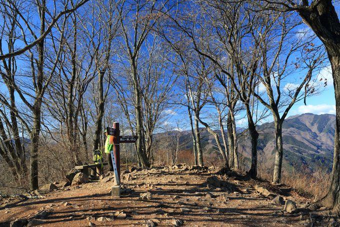 岩茸石山(いわたけいしやま)を目指す。高水三山縦走を動画で確認!