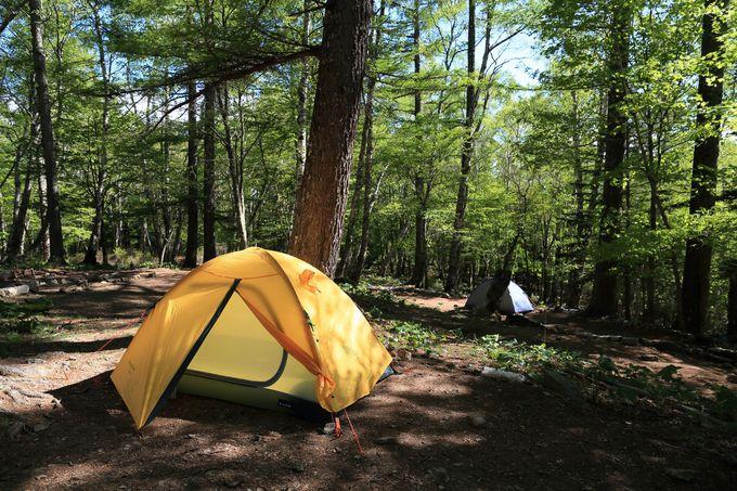 富士見平山荘では宿泊や休憩も!高原のようなすがすがしさでテント泊も可能