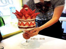 小田原新名物!?「QOL」でど迫力の巨大いちごパフェ&ライスパフェ!|神奈川県|トラベルjp<たびねす>