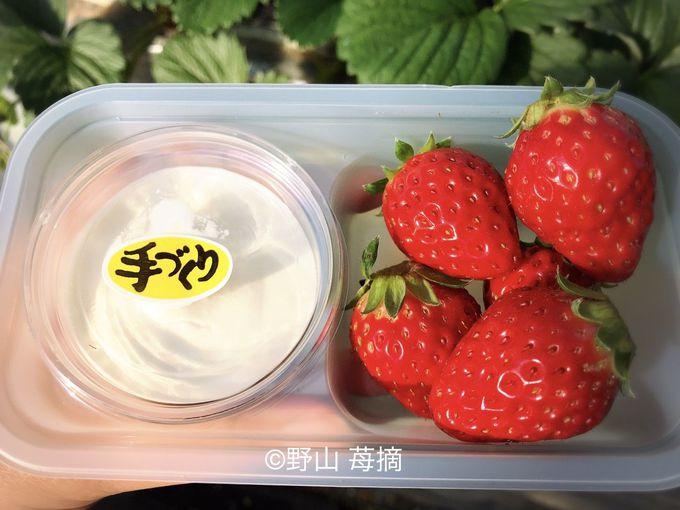 富田農園のためだけに作られた濃厚いちごクリーム!