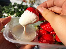 濃厚クリームをつけていちご狩り!秩父「中蒔田 富田農園」で完熟紅ほっぺを食べつくそう!|埼玉県|トラベルjp<たびねす>