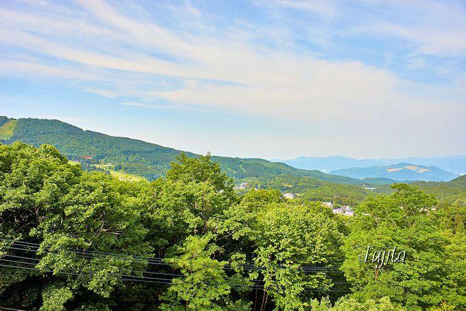 緑豊かな客室眺望が魅力