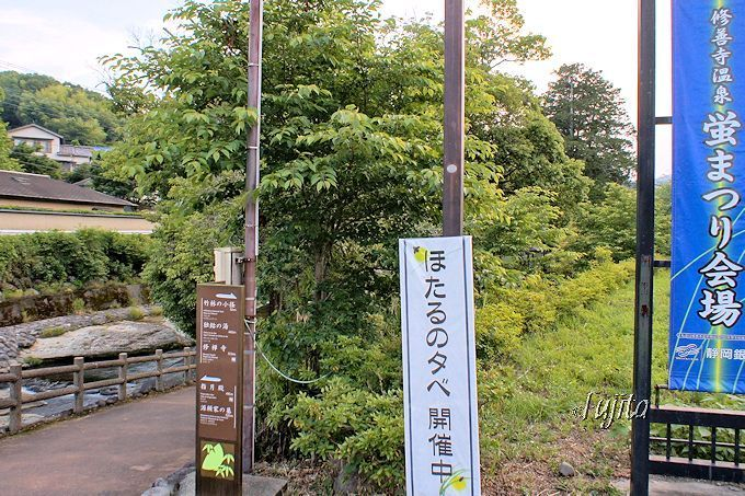 修善寺温泉でホタル観賞!会場の赤蛙公園は駐車場に隣接
