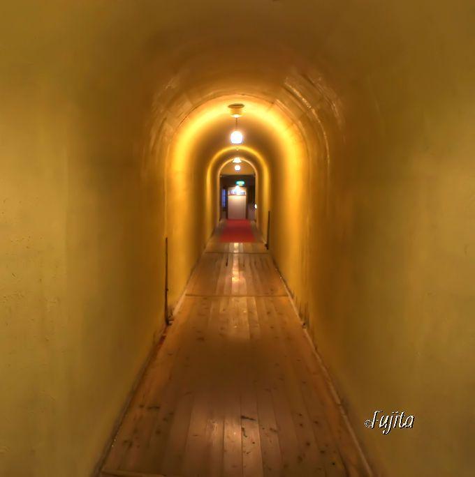 四万温泉積善館本館のトンネルは「千と千尋の神隠し」の冒頭に登場?