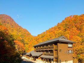 宿周辺の全てが紅葉の絶景!西白河郡・甲子温泉 旅館大黒屋