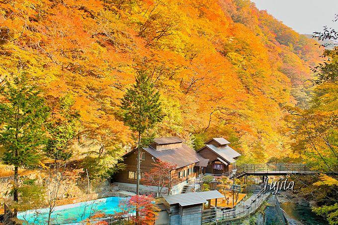 甲子温泉 旅館大黒屋の名物、大岩風呂の湯小屋も紅葉に包まれる!