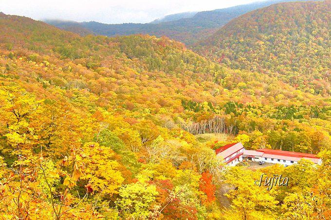 秋は一面の紅葉に包まれる!赤湯温泉「好山荘」の猛烈な絶景