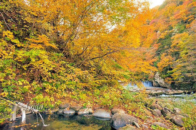 紅葉の絶景が至近距離!鷹の湯温泉の混浴野天風呂