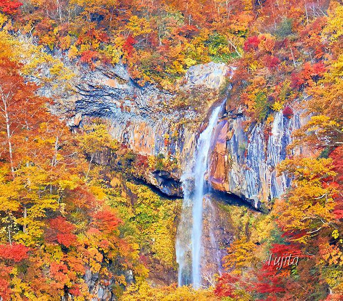 「ペンキのように色鮮やか」な紅葉の絶景に驚愕!大田切渓谷「惣滝」