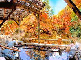 紅葉露天風呂の絶景が凄い!「ゆづくしSalon一の坊」~仙台市・作並温泉~|宮城県|トラベルjp<たびねす>