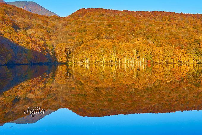 蔦沼の紅葉「感動の瞬間」は、儚く終わるからこそ美しい