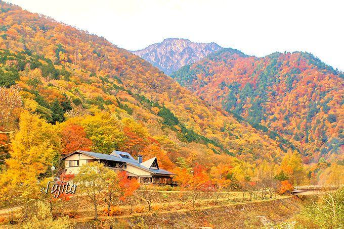 紅葉名所「高瀬渓谷」の紅葉に包まれる!葛温泉「温宿かじか」