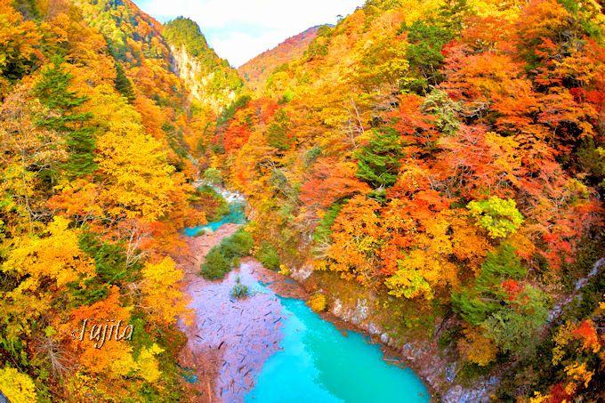 「絵の具のような水色」に紅葉が映える!信州・葛温泉で高瀬渓谷の紅葉狩り