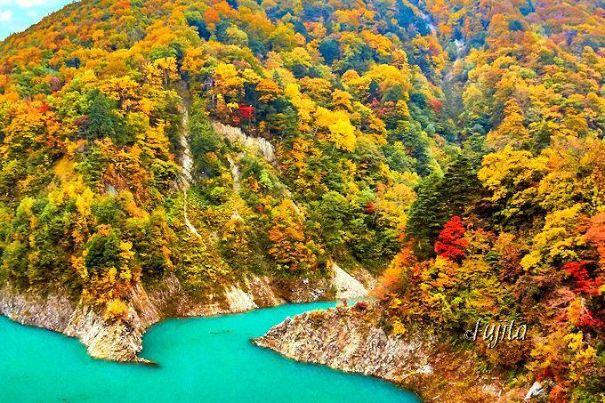 葛温泉が流入して「絵の具のような水色」に!高瀬渓谷「龍神湖」の紅葉