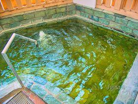 白や緑に変化する硫黄泉が最高!鳴子ホテルは、鳴子温泉屈指の名湯|宮城県|トラベルjp<たびねす>