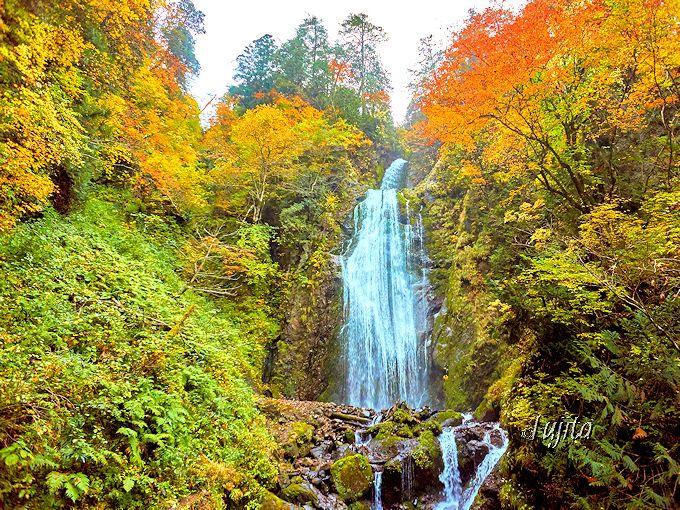抱返り渓谷の折り返し地点「回顧の滝」