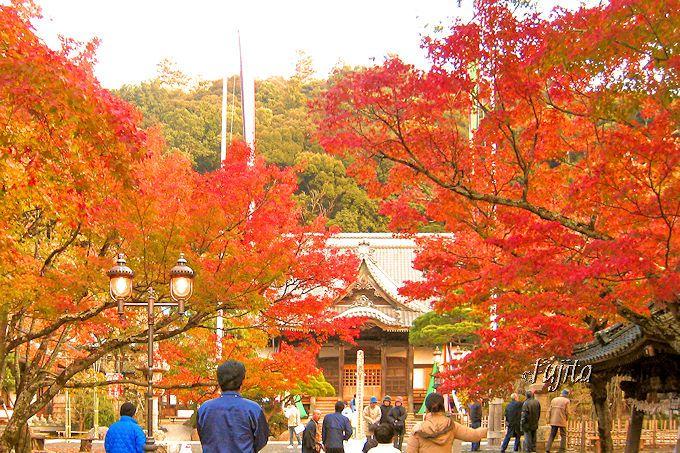 修善寺温泉の紅葉を代表する!修禅寺境内の紅葉