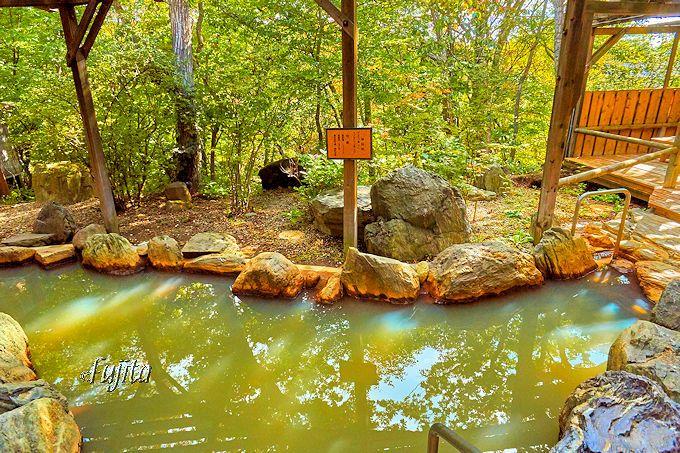 フォレストヴィラの「森の湯」は、まさに森の温泉