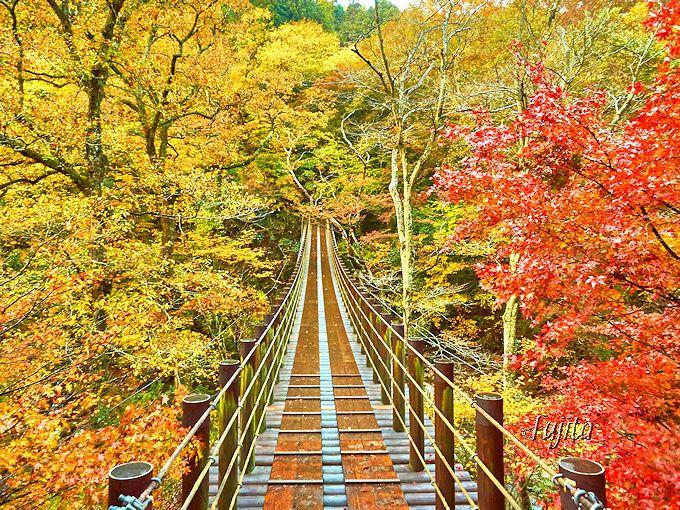 「袋田の滝」の紅葉と同時に見たい!花貫渓谷の紅葉