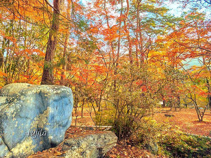 月の石がある?月の石もみじ公園は、長瀞を代表する紅葉名所