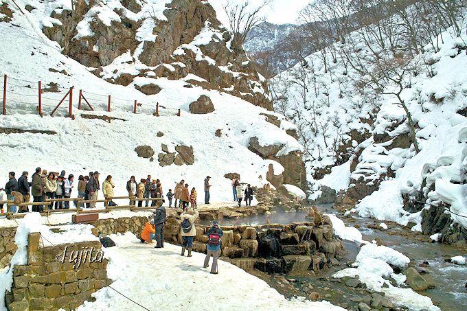 スノーモンキーとは、世界的にも貴重な野生猿の雪見露天風呂入浴