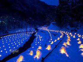雪と灯りの絶景!冬の日光・湯西川温泉「かまくら祭」の夜景が美しすぎる|栃木県|トラベルjp<たびねす>