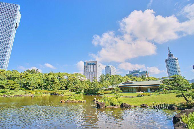 日本庭園「見浜園」が美しい!千葉県立「幕張海浜公園」