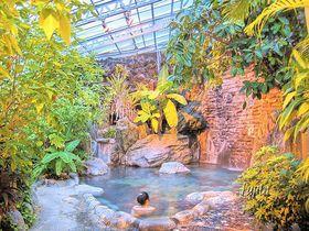 伊豆・熱川温泉「ホテル カターラ RESORT&SPA」で充実した温泉とバイキングを満喫!|静岡県|トラベルjp<たびねす>