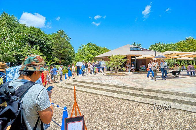 腰掛庵のかき氷!山形県総合運動公園で2017年夏も販売再開!