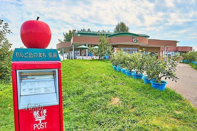 りんご生産量日本一!本場弘前市営の公園でりんご狩り