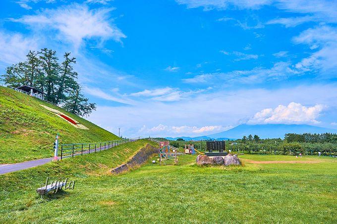 弘前市りんご公園からは、津軽富士の岩木山も一望出来ます。