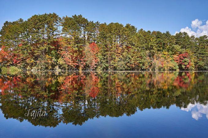 柳沼に紅葉が映り絶景が2倍!五色沼自然探勝路は西側から散策