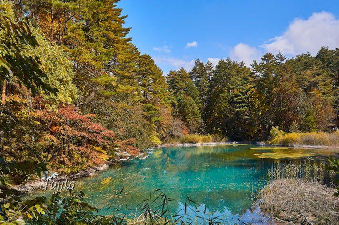 神秘的な水色が美しい!青沼は五色沼のハイライト