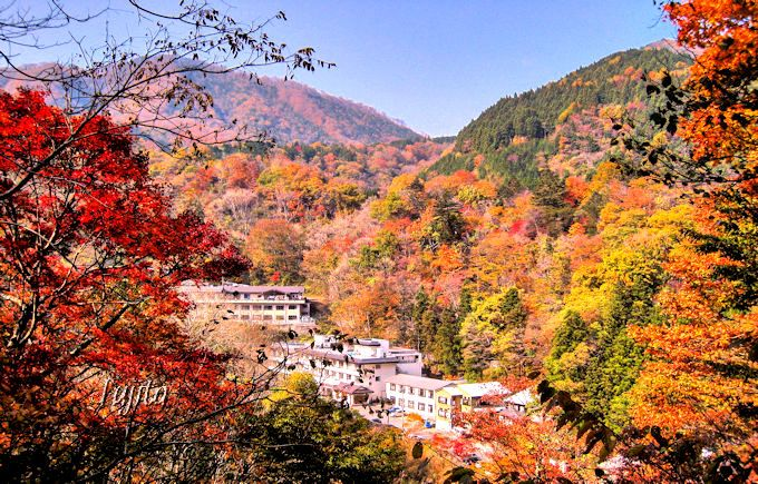塩原元湯温泉「大出館」は一面の紅葉に包まれます!