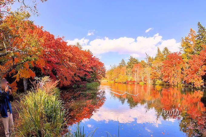 日本屈指の紅葉をパノラマで一望!雲場池の遊歩道を散策しよう